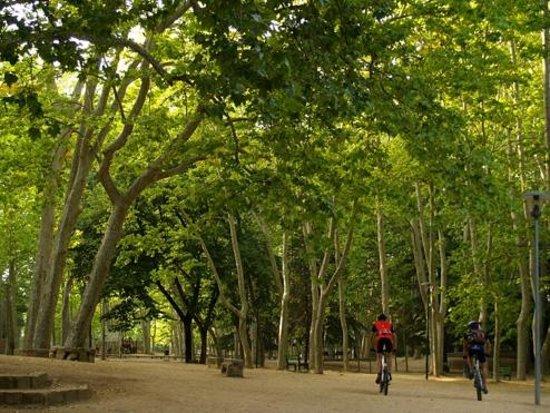 Can Canaleta: Parque de Sant Salvador