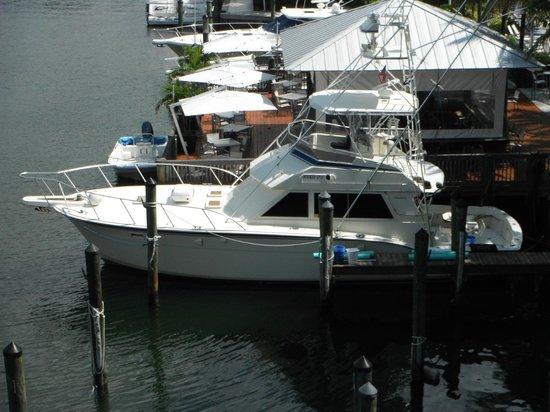 Hooked Up Sportfishing Charters: Hooked Up II