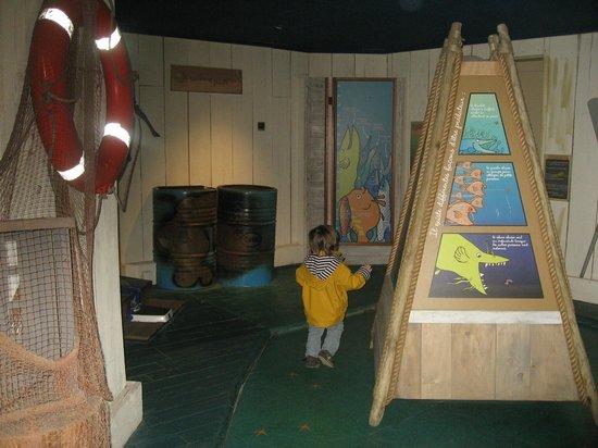 Grand Aquarium de Touraine : Espace ludique