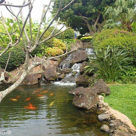 Kaua'i Marriott Resort: Gardens