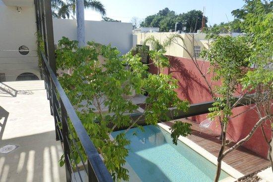 Koox Casa de las Palomas Boutique Hotel: Pool and Courtyard