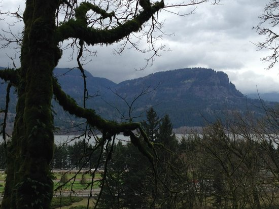 Multnomah Falls: View from halfway up the trail to the bridge
