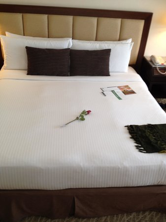 Hotel Istana: bed set up