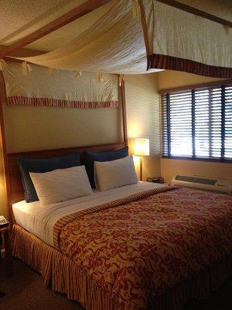 Wild Palms Hotel - a Joie de Vivre Hotel : Room
