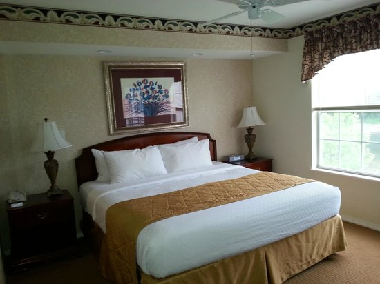 Suites at Fall Creek : comfortable bed but need black-out curtins
