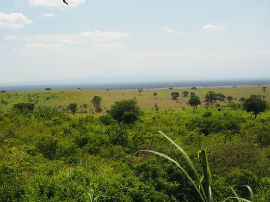 Kyambura Gorge Lodge: Views