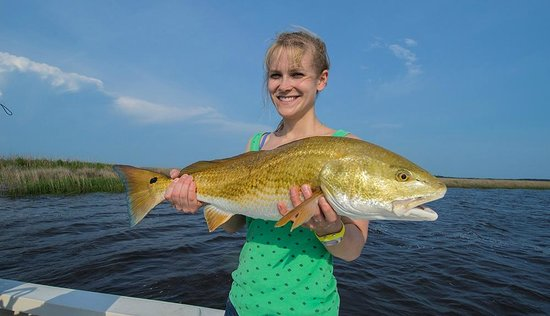 Winyah bay redfish picture of carolina guide service for Sc fishing license cost