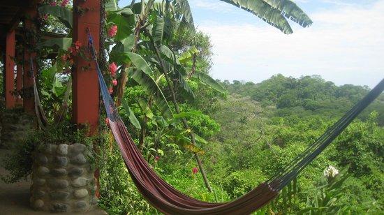 Costa Rica Yoga Spa : Hammock time!  :)