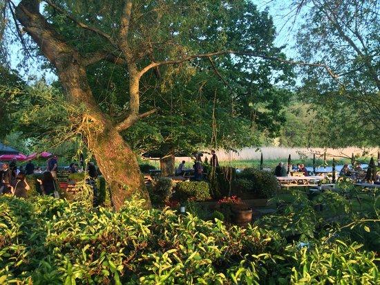 The Mayfly Riverside Pub: beer garden