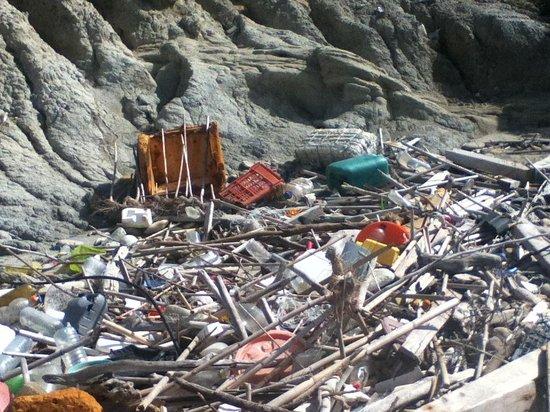 Apollonion Resort & Spa Hotel: Rubbish on beach!
