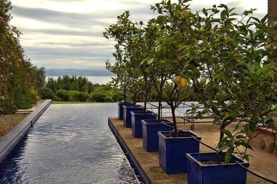 Abbraccio del Lago : La piscina