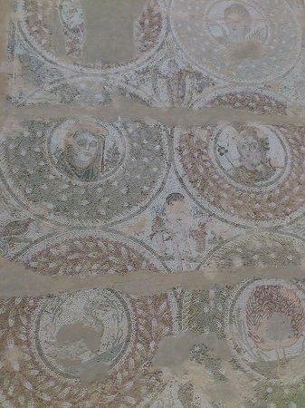 Carthage Museum : MOSAIQUE