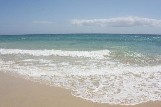 Iberostar Fuerteventura Palace : Enfrente del hotel