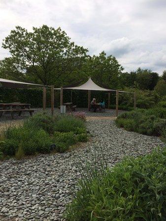 RHS Garden Harlow Carr: More views