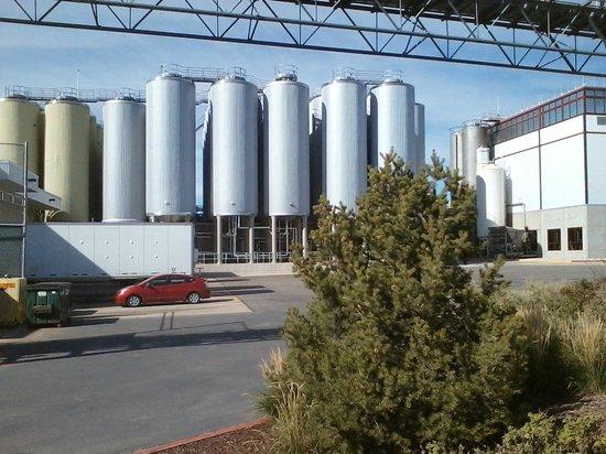 New Belgium Brewing : Grain & hops bins outside
