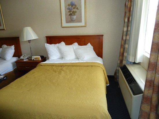 Quality Inn Near Hollywood Walk of Fame: Vista do quarto