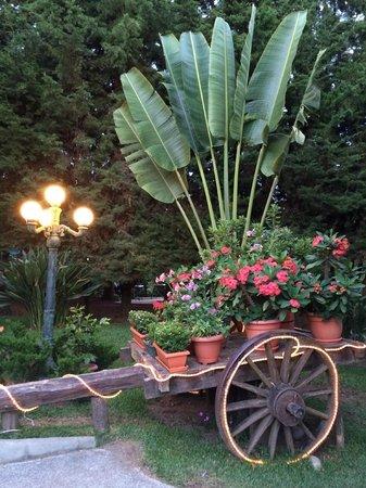 Las Brumas Grill y Café: Jardines