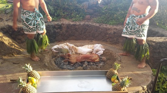 Drums of the Pacific Lu'au : Pig