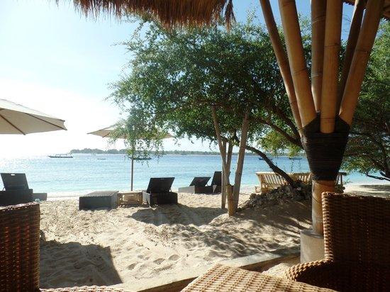 Vamana Resort: view from breakfast