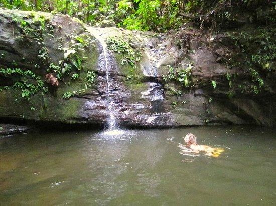 Samasati Retreat & Rainforest Sanctuary: Natural swimming pool and waterfall