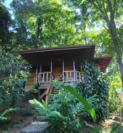 Samasati Retreat & Rainforest Sanctuary: SPA, photo by Henry Rowland