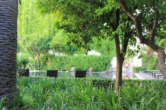 Hospes Palacio del Bailio : piscine