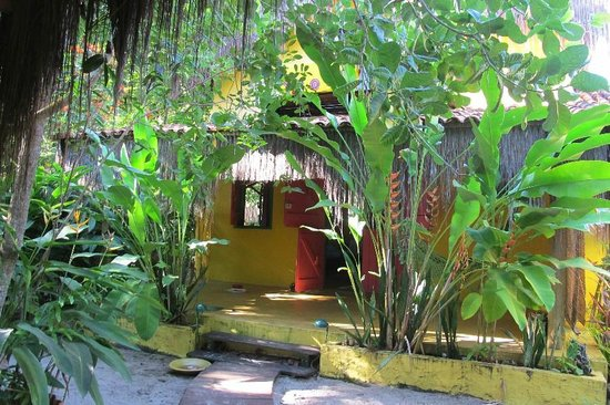 Canoanativa: Casona (semicubierto) y jardin