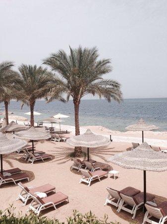 Renaissance Sharm El Sheikh Golden View Beach Resort : Spotless beach