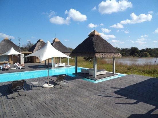 Kapama River Lodge : Piscina e spa
