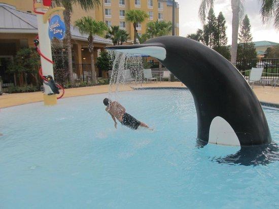 Fairfield Inn & Suites Orlando at SeaWorld® : as crianças adoram