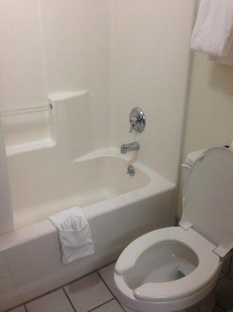 Baymont Inn & Suites LaGrange : nice, CLEAN bathroom