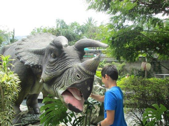 Parque expora dinosaurios fotograf a de parque explora for Actividades jardin botanico caguas