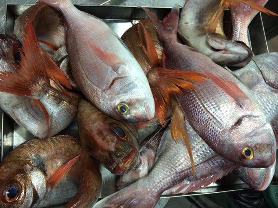 Ristorantino da Spano: Pesce freschissimo da ristorantimo da spani'