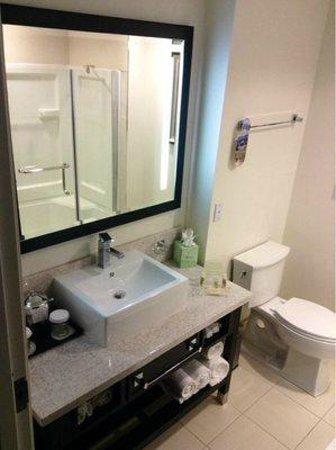 Holiday Inn Sarasota - Airport: Bathroom
