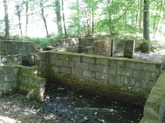 Bois des Huit Rues V 1 Rocket Site