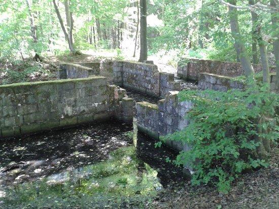 Bois des Huit Rues V 1 Rocket Site : Fortification Allemande