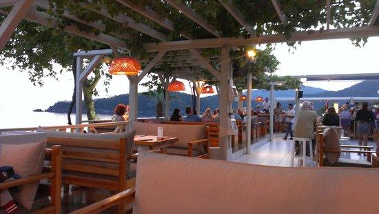 Buzz Bar: the loveliest place fot chilling