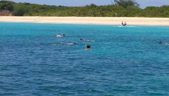 Zatoka Simpson, Sint Maarten: Swimming with Sea Turtles @ Deserted Island