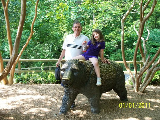 Greenville Zoo: not a real bear of course