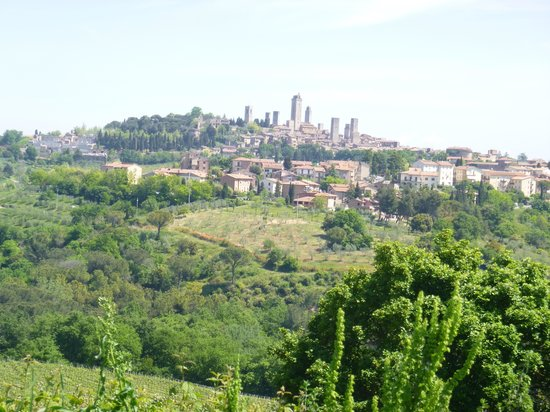 Podere Sant'Elena: Vista desde el hotel