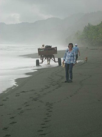La Leona Eco Lodge : The walk along the beach with the horse and cart