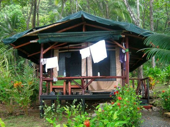 La Leona Eco Lodge: Ocean view tent