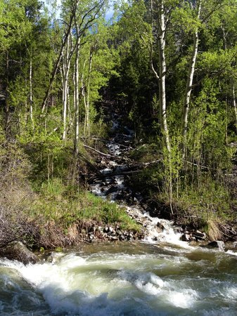 Lake Fork Trail: Lake Fork