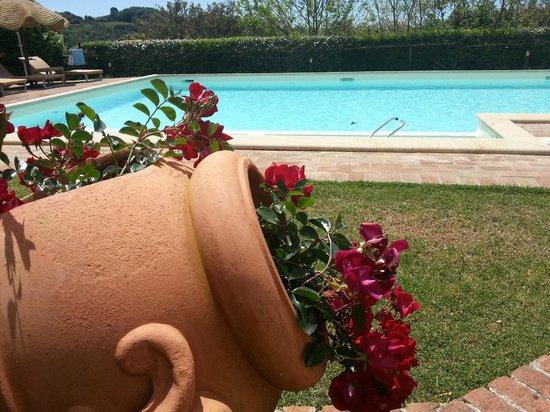 La Melosa Resort : piscina