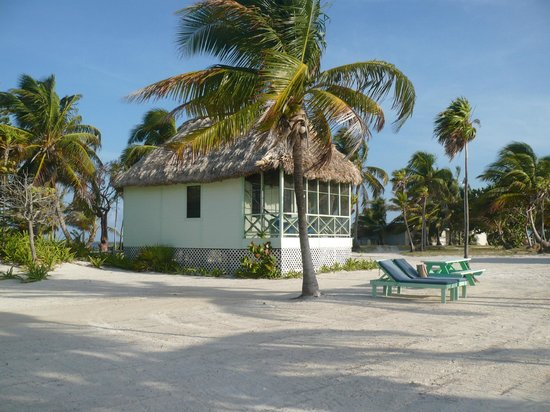 Blackbird Caye Resort: My simple but great cabana