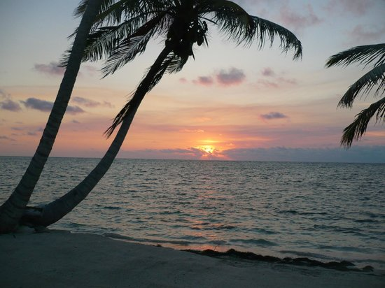 Blackbird Caye Resort: My view every morning from my cabana porch!!