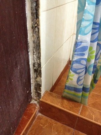 Hostal del Marquez: Black mold in bathroom
