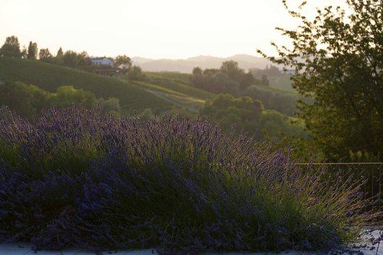 La Villa Hotel: Countryside view