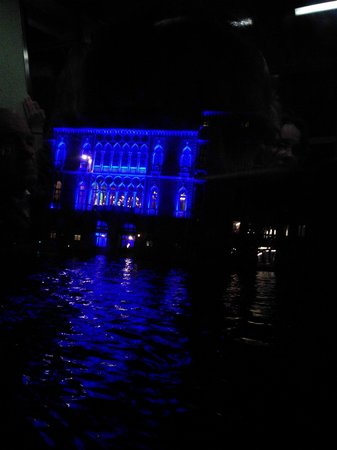 B&B San Giacomo Venezia : The Grand Canal by night