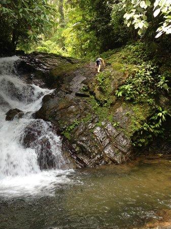 Brisas del Nara: The private waterfall!